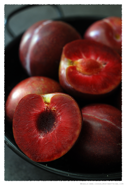 blood plums© by Haalo