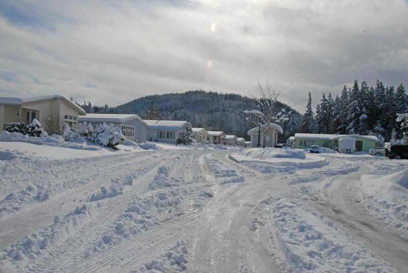 2011 Feb snow 1