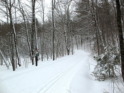 skiday6