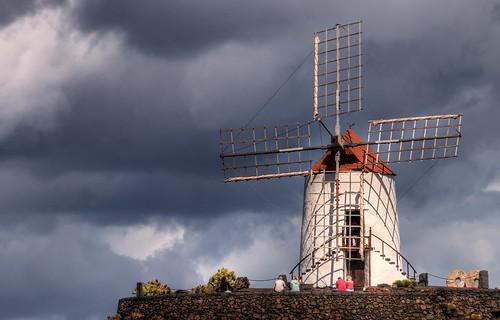 Jardin de Cactus Windmill