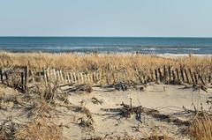 [Ocean City] (placenamehere) Tags: fence newjersey unitedstates dune nj oceancity capemaycounty nikon70300mmvr