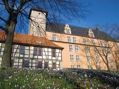 IMG_9264 (KaRoh's Photobox) Tags: castle spring schloss château printemps frühling krokusse welfenschloss 2011 hannmünden