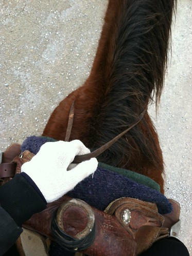 . horseback riding .