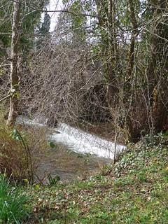 Weir River Dore, Vowchurch