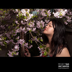 211/365 (Eric V. Santos) Tags: flowers trees tree girl project spring backyard sister blossoms smell 365 strobist