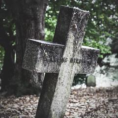 In loving memory (#Weybridge Photographer) Tags: adobe lightroom canon eos dslr slr 40d brompton cemetery west london kensington graveyard autumn leaf leaves headstone cross stone lean leaning toppling