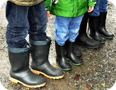 The Lineup (Rosina Huber) Tags: trees winter signs playing cold nature water fun outdoors stream boots loop fungi trail fungus swamp rubberboots aliceinwonderland naturewalk