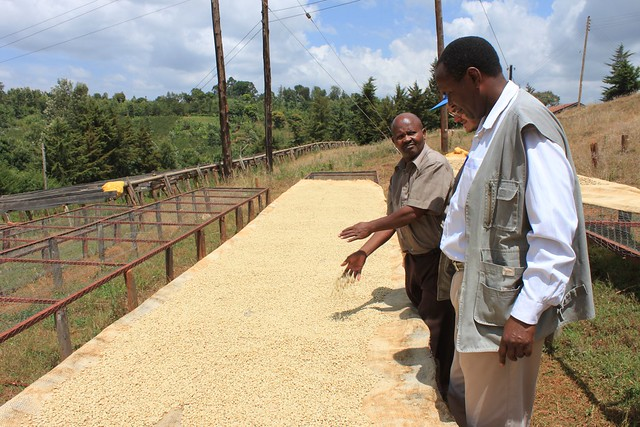 Kieni Facotry Manager Geofrey Wanjau