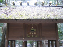 Ise Inner Shrine 17 (khemmann) Tags: japan ise iseshrine innershrine shint mieprefecture isejing naik shintshrine
