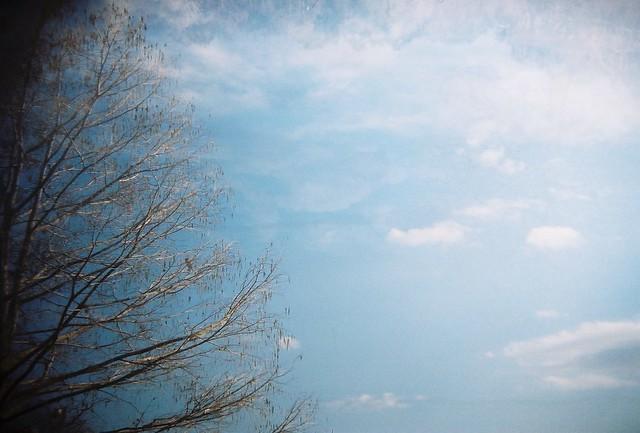 sky, lake alice