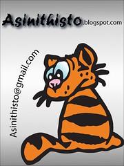 Asinithisto