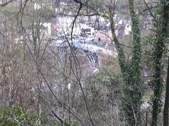 Ironbridge through the trees