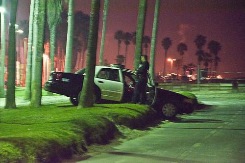 LAPD OFW