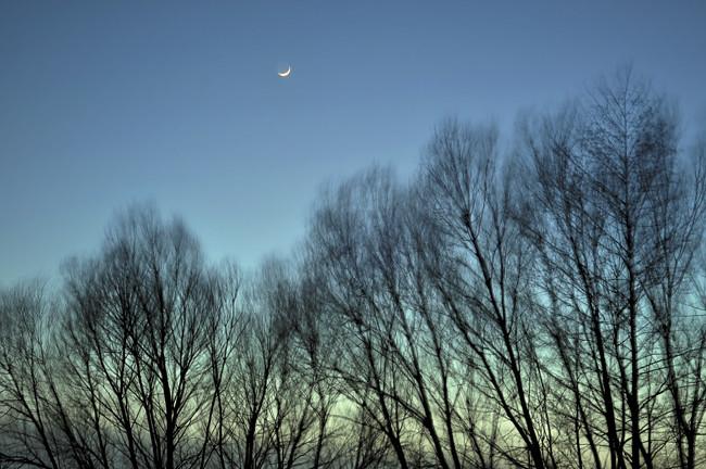 blå kväll