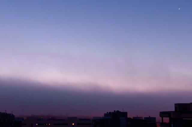 una mañana con niebla