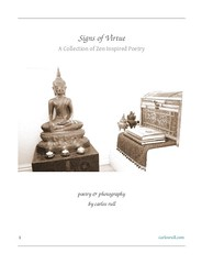 signs of virtue ~ cover page