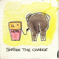 Shrink the Change