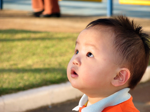 A little asian boy looks surprised about the surroundings.