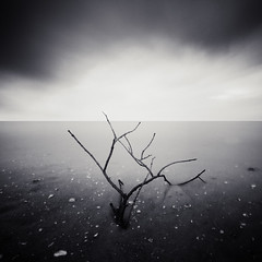 * g a v e  u p * (^soulfly) Tags: china longexposure mono minimal simplicity canon5d sep shoreside cs4 ef1740mm bwnd110