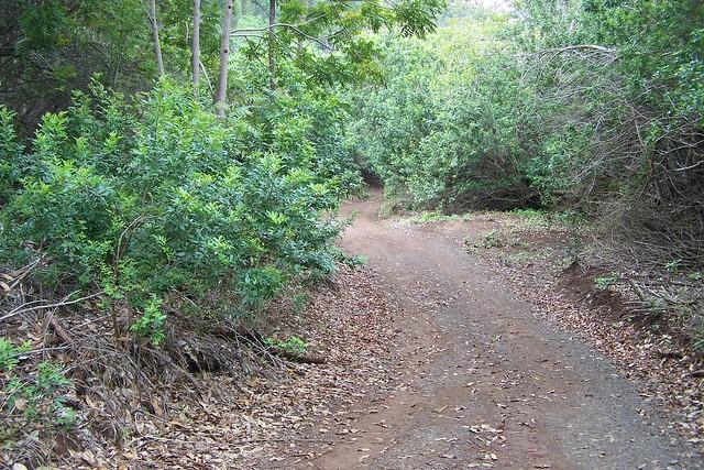 Munro Trail
