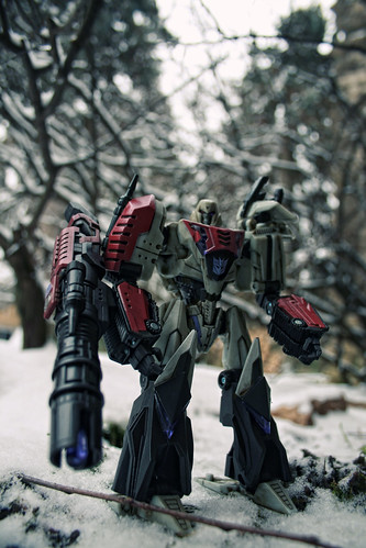 Megatron in Winter