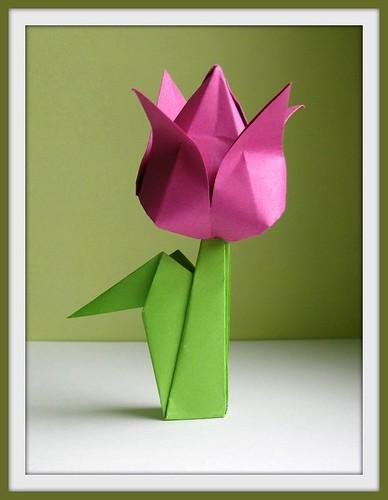 Origami tulp