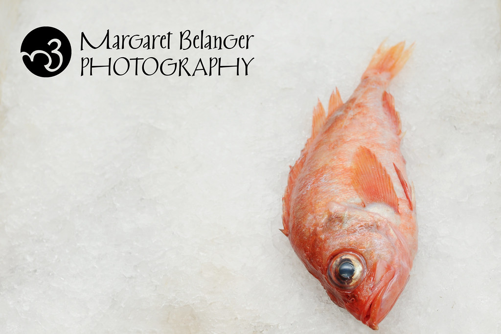 Fish, food photography