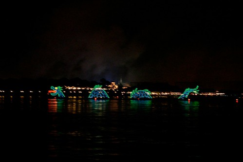 Water Pageant from Grand Floridian