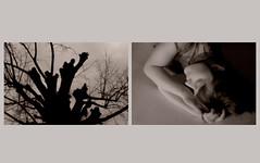 Le rve de Clara (ANTHY IOANNIDES) Tags: light bw white black art nude photography nikon noir photographie artistic nu body femme dream naturallight sensual vision imagination blanc nus flou regards poesie douceur sensible anthy feminin rve imaginaire rveries antheia artisticpictures lumierenaturelle d700 ioannides anthyioannides anthyioannidespictures lervedeclara paysagesoniriques wwwanthych antheiaioannou