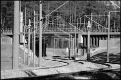 BBI Tracks GLEISE 3 (SJFoto1) Tags: berlin ice plane germany airport track zug bahnhof east flughafen sbahn flugzeug brandenburg gleise sxf neubau bbi nbs elektrik schnefeld bohnsdorf anbindung willybrandinternational anbindungost