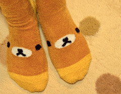 Rilakkuma Socks (Fesapo) Tags: cute socks japan canon fuzzy culture pop kawaii shimane rilakkuma