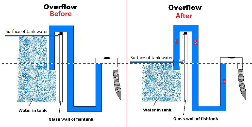 Cheapest Ever Overflow You Can Diy Filtration Aquatic