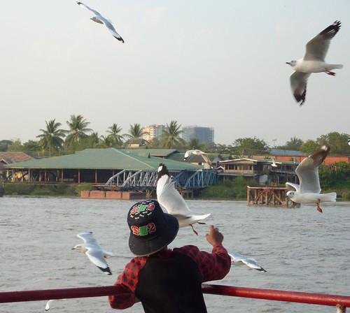 Yangon-Pathein-Bateau-Soiree (8)