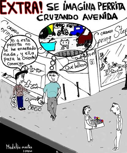 SE IMAGIN A PERRITA CRUZANDO AVENIDA