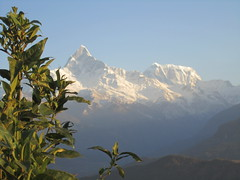 IMG_1078 (jsnyder624) Tags: nepal pokhara sarangkot