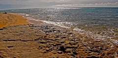 On the Rocks (jcc55883) Tags: ocean hawaii nikon oahu pacificocean diamondhead kaalawaibeach nikond40 diamondheadroad