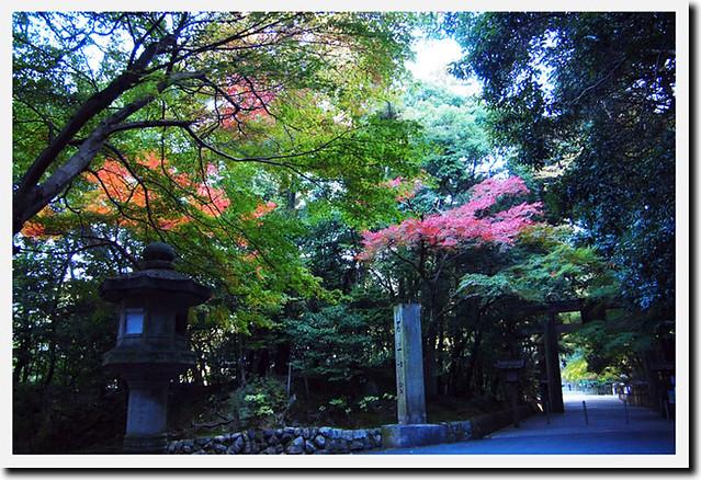 20101119_085526_石上神社