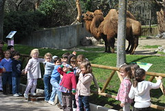 orvalle_zoo (17)