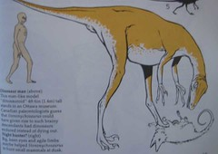 A Field Guide to Dinosaurs, 1983, Page 65