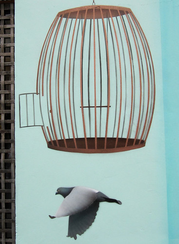 Flying Pigeon and Cage
