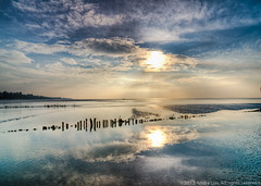 Heaven Reflection (Andre Luu) Tags: sea sky seascape nature water clouds landscape fineart vietnam lowtide hochiminhcity waterreflection superwideangle seabed seatexture cangio bestlandscape sealandscape sandtexture cloudpattern wildbeach groundtexture toplandscape oceanlandscape bestcomposition musselpicking sal1635z sonya850 zeisszavariosonnart1635mm zeiss1635za