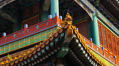 Forbidden City (TanzPanorama) Tags: china roof decorations color colour detail architecture buildings asia beijing ng forbiddencity nationalgeographic sonyalpha sonynex