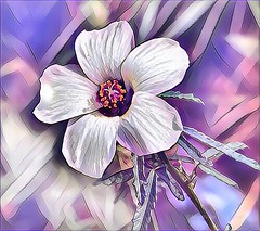 Flower in Digital Glory (AngelVibePhotography) Tags: purple dukegardens garden blossoms macro art flower blossom nikon nikonp900 nature closeup flowers outdoor photography digitalart