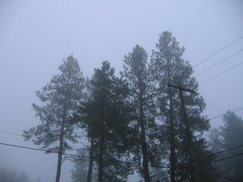 1-25-11 N. 6th Fog