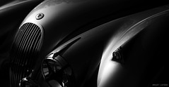 Jaguar XK 120 (Amaury AML) Tags: light england white black classic cars 120 monochrome car photography photo voiture racing exotic british jaguar meet exotics dhc ancienne amaury classique xk aml laparra