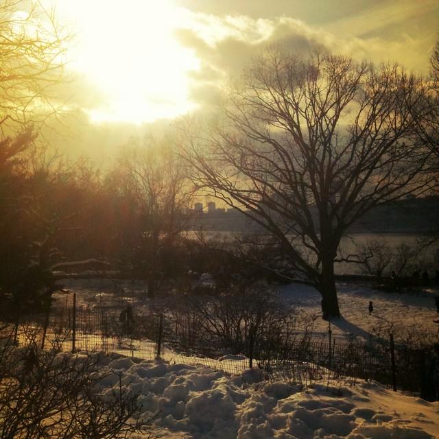 Late day sun