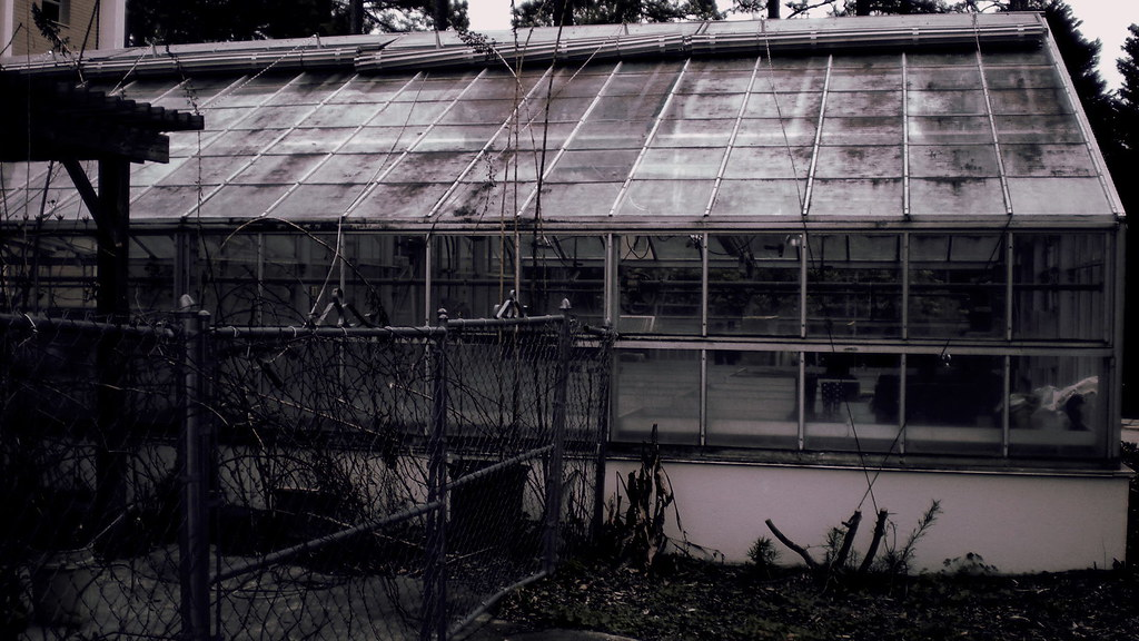 Greenhouse behind Biology building