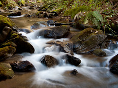 Flow (Rui Nuns) Tags: wood nature water rio gua river flow rocks stream natureza smooth bosque foam floresta ribeiro suave pedras espuma penela espinhal fujifilms6500 ruinunes