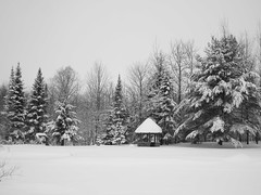 Snow Deep #3