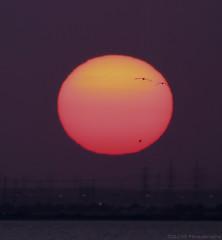 Wonderin if I should set? (ZiZLoSs) Tags: sun face canon eos 7d kuwait usm aziz abdulaziz عبدالعزيز f56l ef400mmf56lusm 365daysproject zizloss المنيع ef400mm 3aziz canoneos7d almanie abdulazizalmanie httpzizlosscom